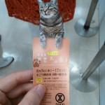 世界ネコ歩き写真展に行ってきました…
