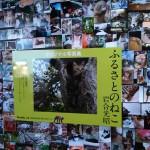 世界ネコあるき写真展に行ってきましたパート2…